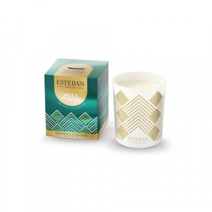 Scented candle 170 g